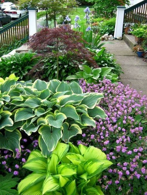 Cheap Front Yard Landscaping Ideas That Will Inspire 14