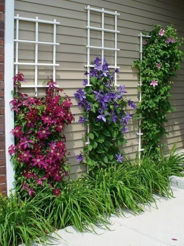 Cheap Front Yard Landscaping Ideas That Will Inspire 20