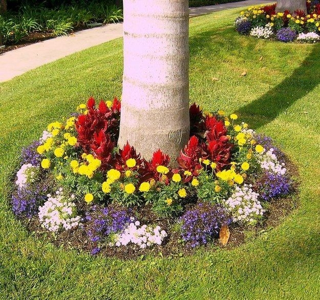 Cheap Front Yard Landscaping Ideas That Will Inspire 28