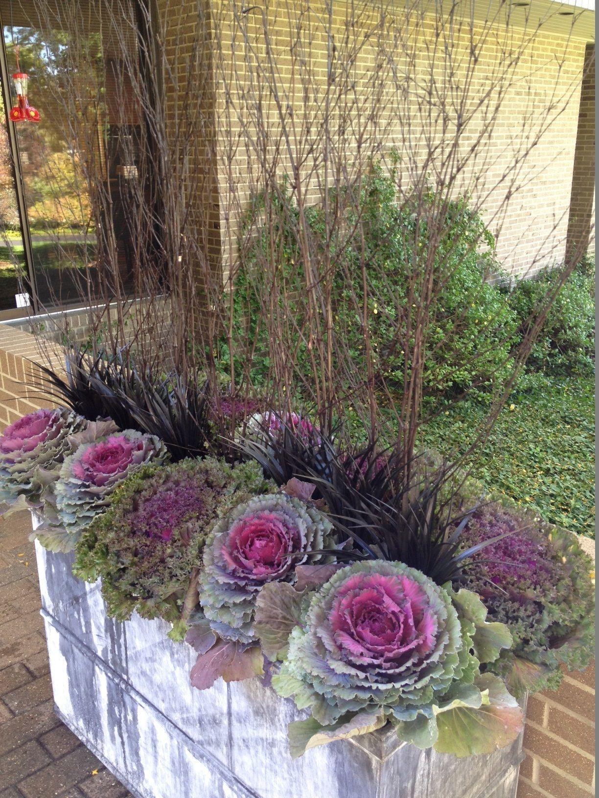 Cozy Decorative Garden Planters Design Ideas 25