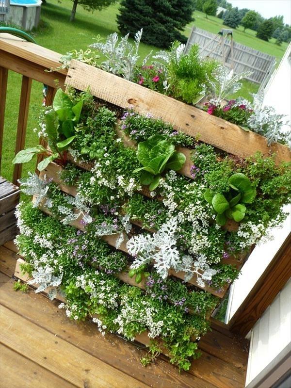 Cozy Decorative Garden Planters Design Ideas 31