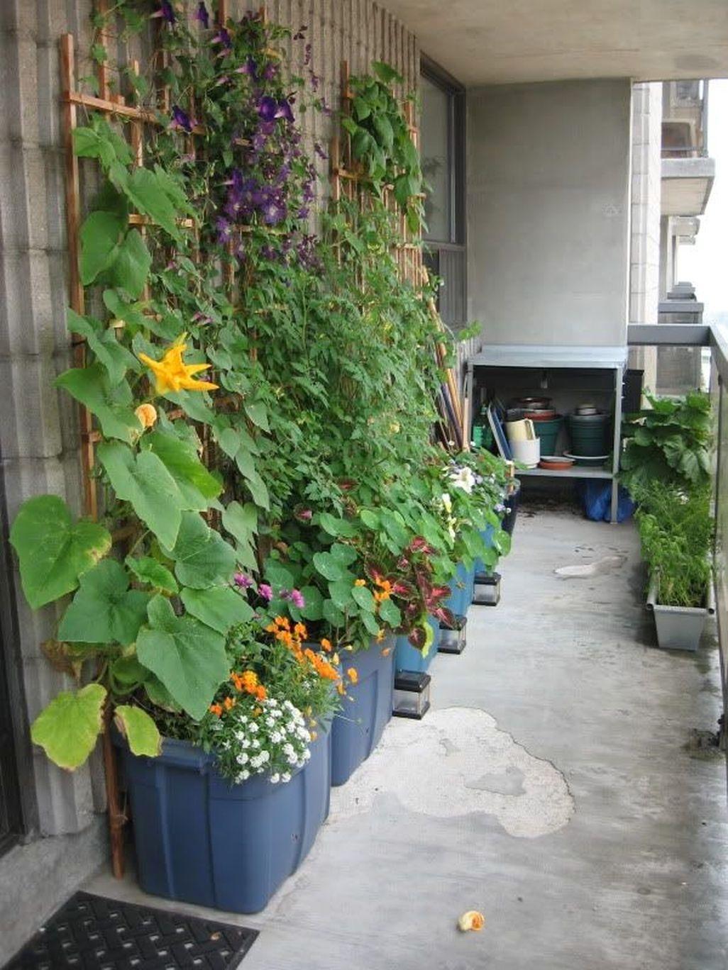 Creative DIY Patio Gardens Ideas On A Budget 38