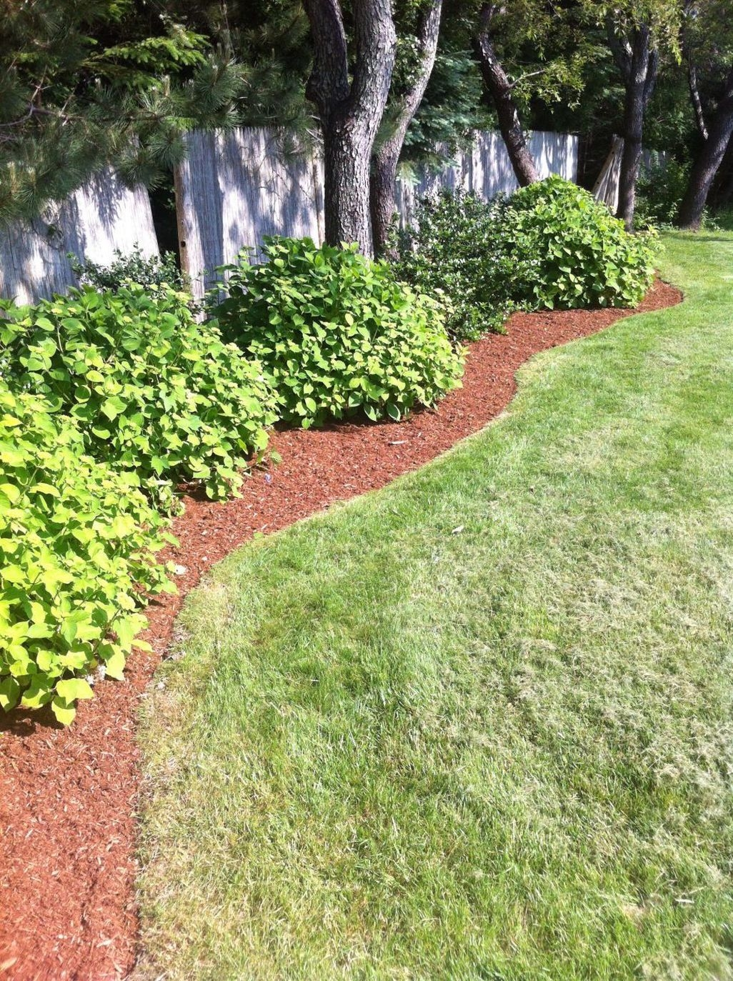 Easy And Low Maintenance Front Yard Landscaping Ideas 24