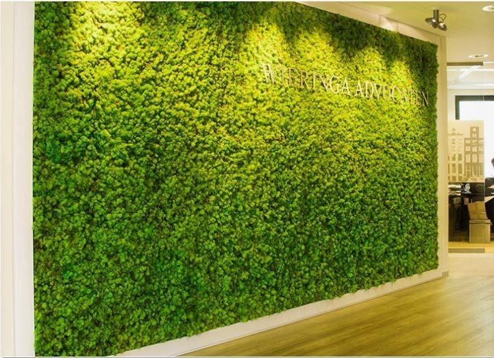 Relaxing Green Office Décor Ideas 04