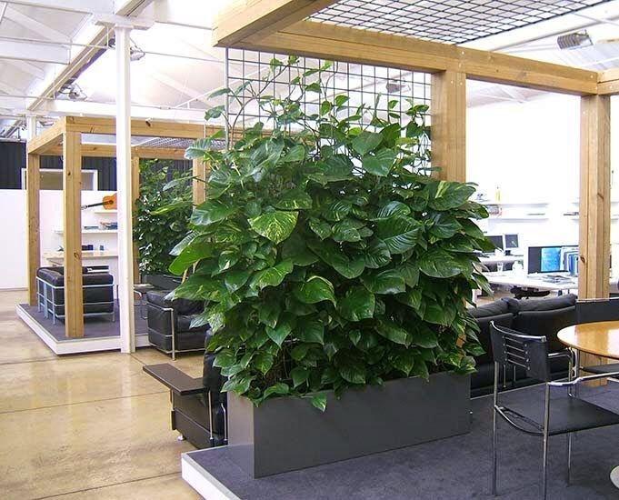 Relaxing Green Office Décor Ideas 23