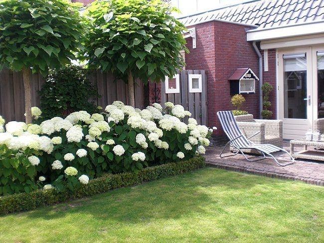 Relaxing Small Garden Design Ideas 12