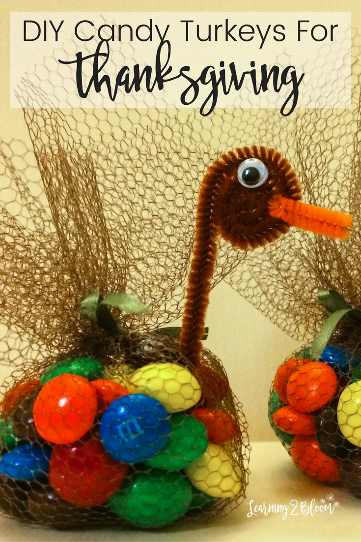 Lovely Turkey Decor For Your Thanksgiving Table Ideas 41