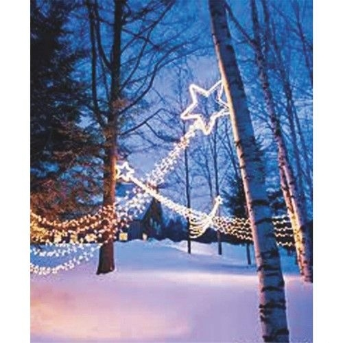 Elegant Christmas Lights Decor For Backyard Ideas 18