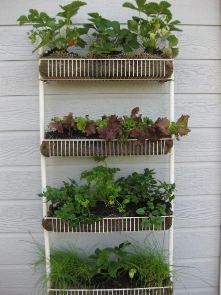 Awesome Small Space Gardening Design Ideas17