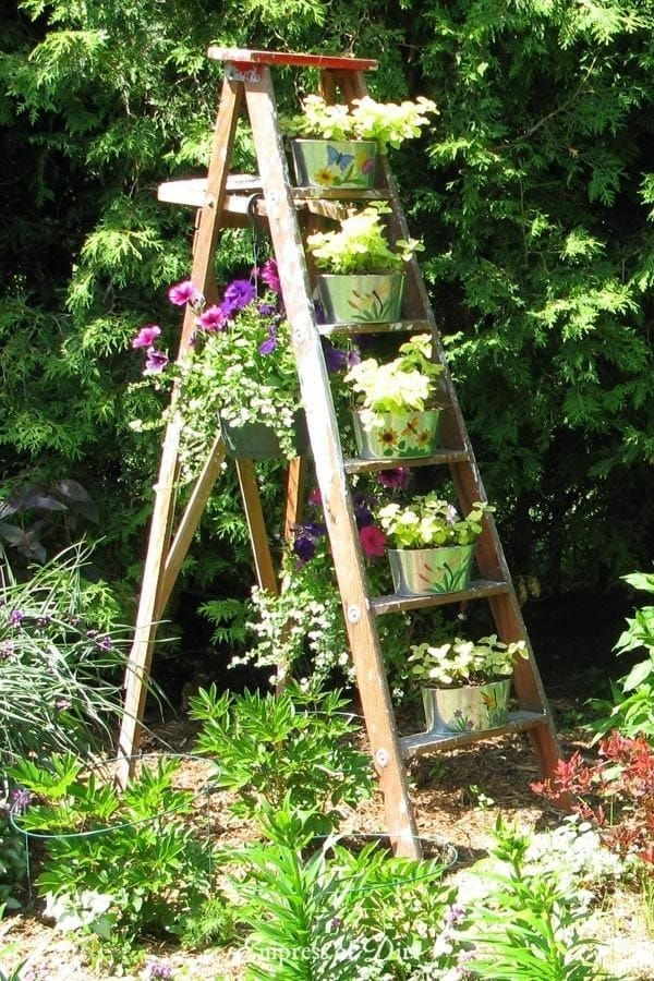 Awesome Small Space Gardening Design Ideas41