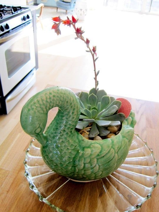 Wonderful Cactus Centerpieces Ideas10