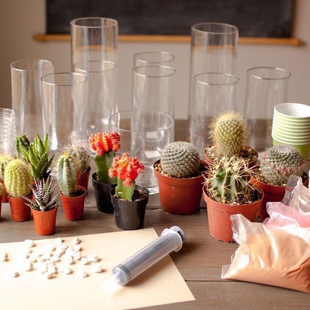 Wonderful Cactus Centerpieces Ideas33