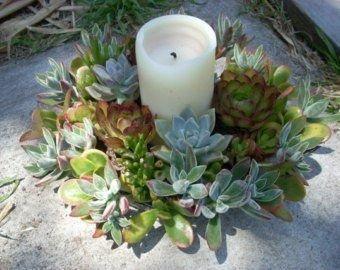 Wonderful Cactus Centerpieces Ideas34