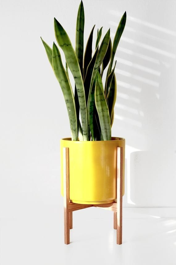 Awesome Stand Wooden Plant Ideas02
