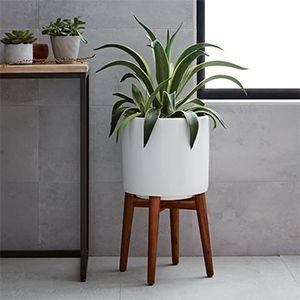 Awesome Stand Wooden Plant Ideas20