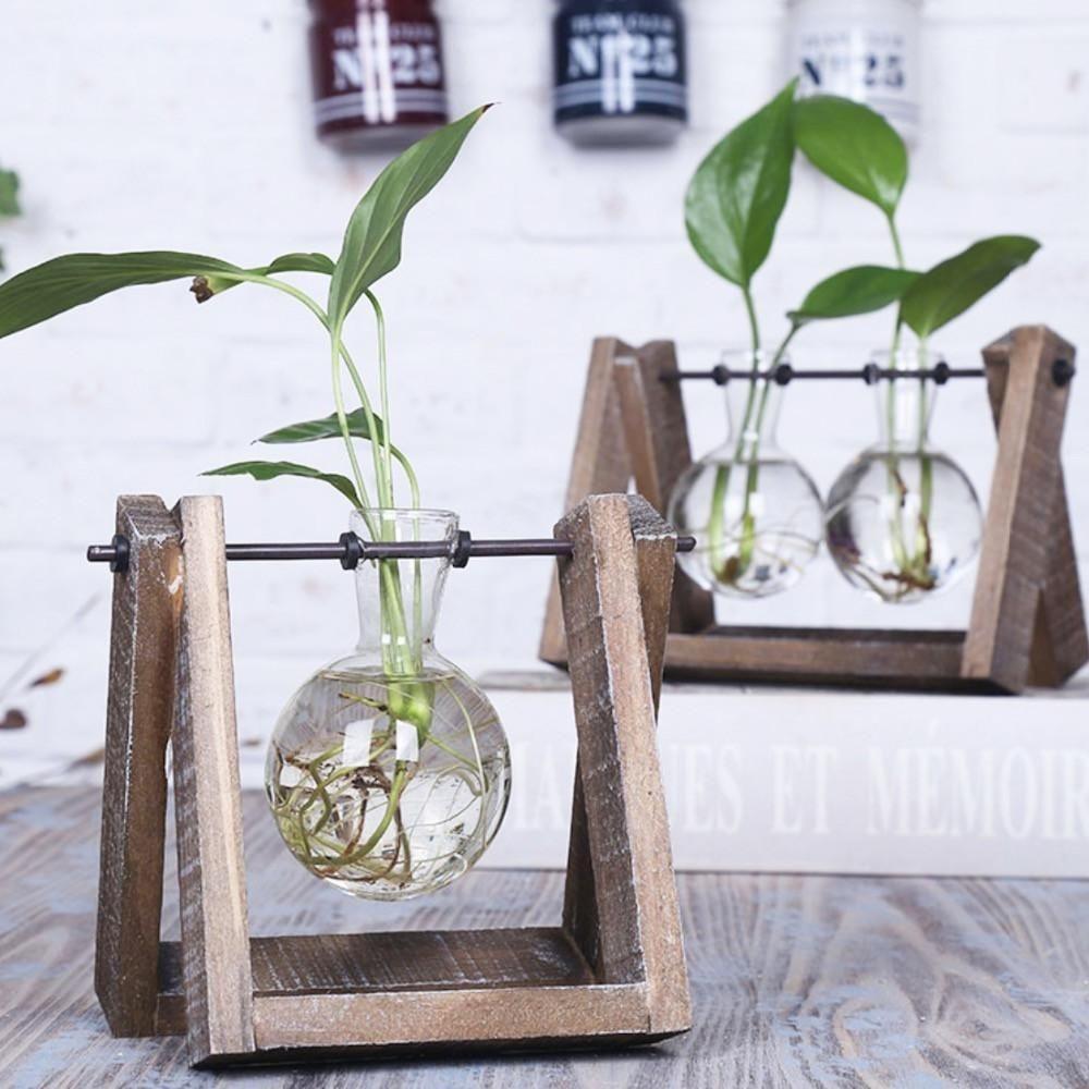 Brilliant Bonsai Plant Design Ideas For Garden30