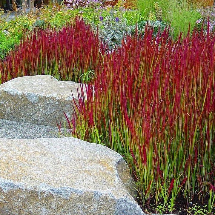 Minimalist Japanese Garden Ideas01
