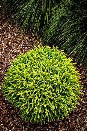 Minimalist Japanese Garden Ideas04