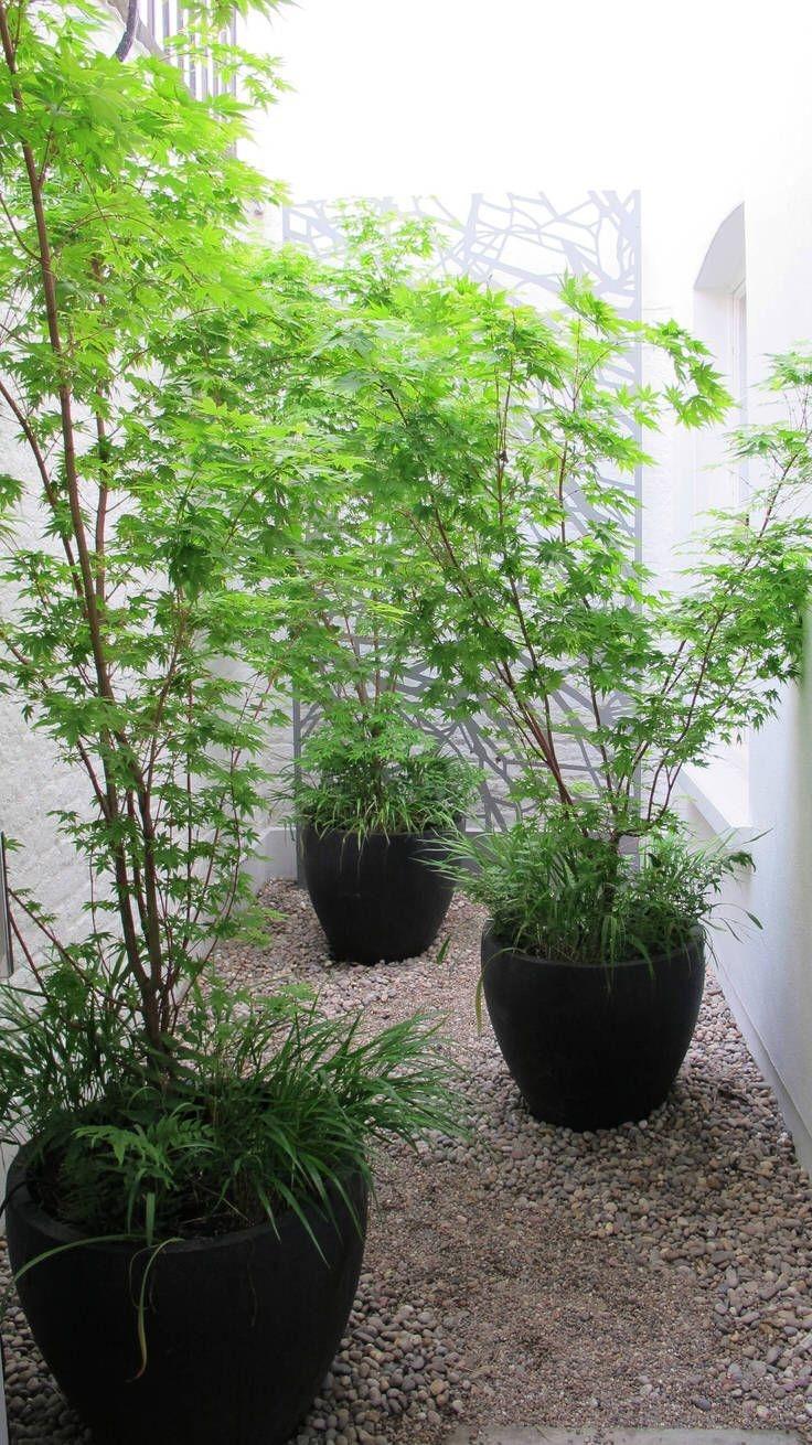 Minimalist Japanese Garden Ideas22
