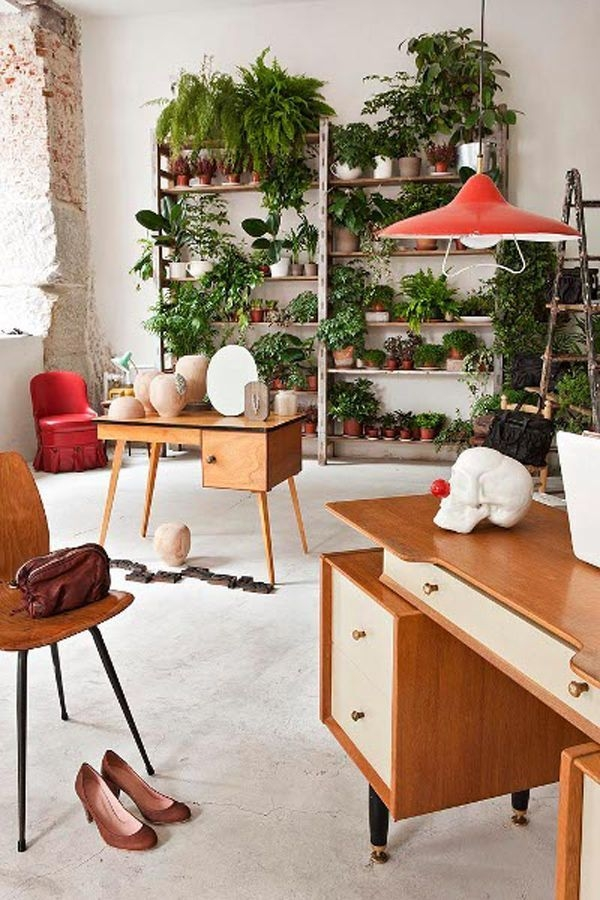 Simple Wall Plants Decorating Ideas03