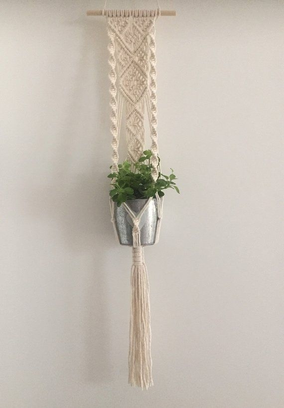 Simple Wall Plants Decorating Ideas09