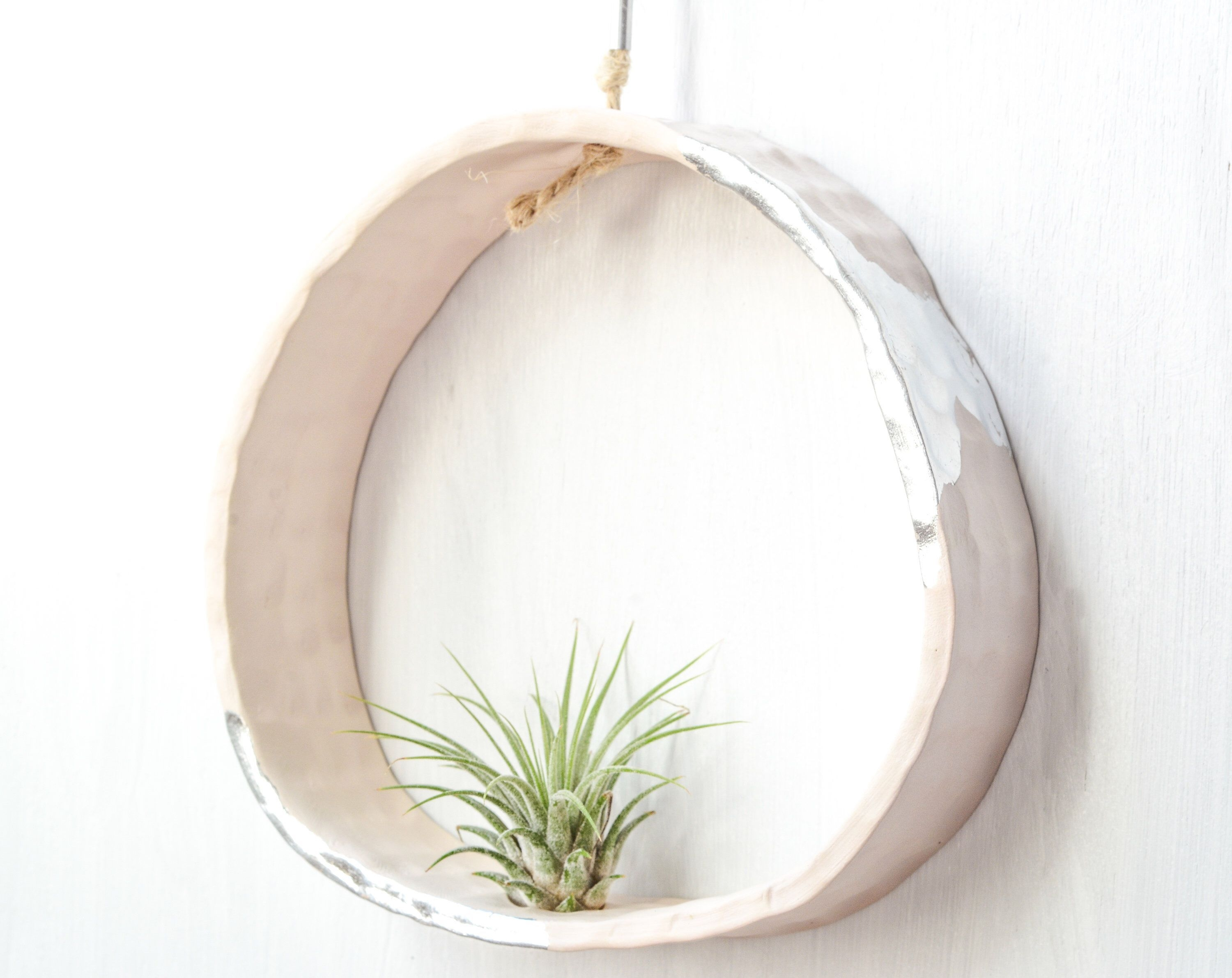 Simple Wall Plants Decorating Ideas18