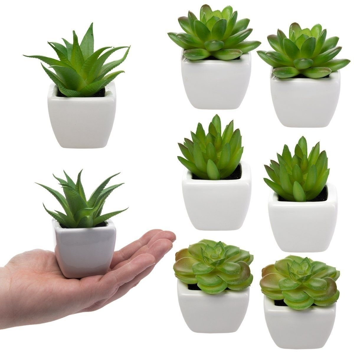 Simple Wall Plants Decorating Ideas20