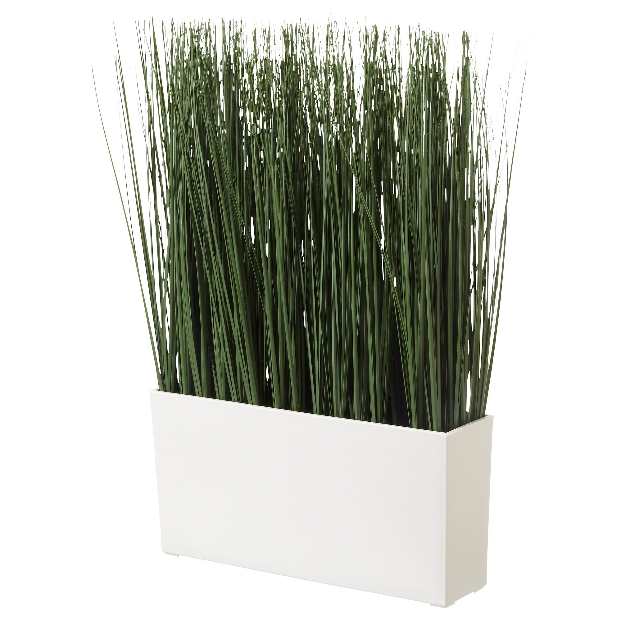 Simple Wall Plants Decorating Ideas33