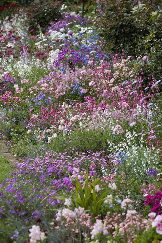 Simple Small Flower Gardens And Plants Ideas28