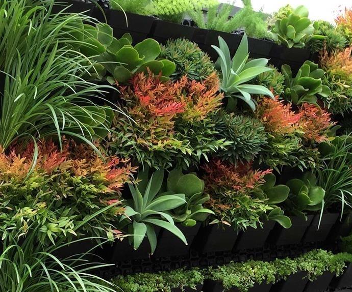 Brilliant Vertical Gardening Ideas23