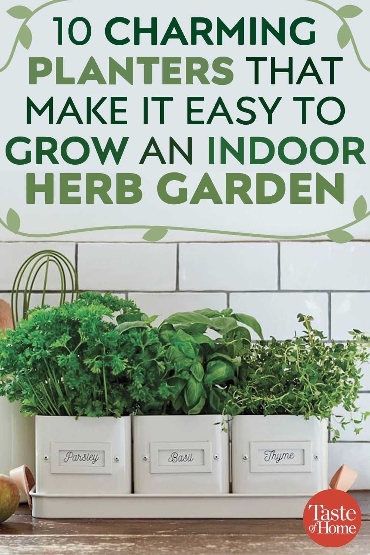 Superb Indoor Garden Designs Ideas For Home34